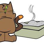 Toilette per Gatti: utilità, tipologie e come scegliere la migliore
